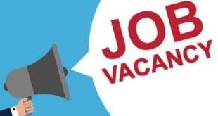 Jobs Vacancies in Ghana Driver at Palladium
